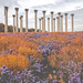Columns in Fall by Nathan_A_Jones