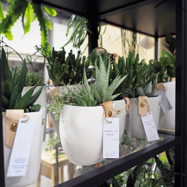 Still swooning over the gorgeous @leafsmithandkin hanging succulent planters at @finders_keepers this morning - look for them right at the entrance!  . . . Beautiful job lovelies  ?