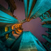 Cool Tones of Tribune Tower by ShutterRunner