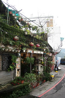 House with over-grown vegetations on the wall