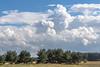 Under a Dutch sky