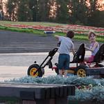 Niños motorizados