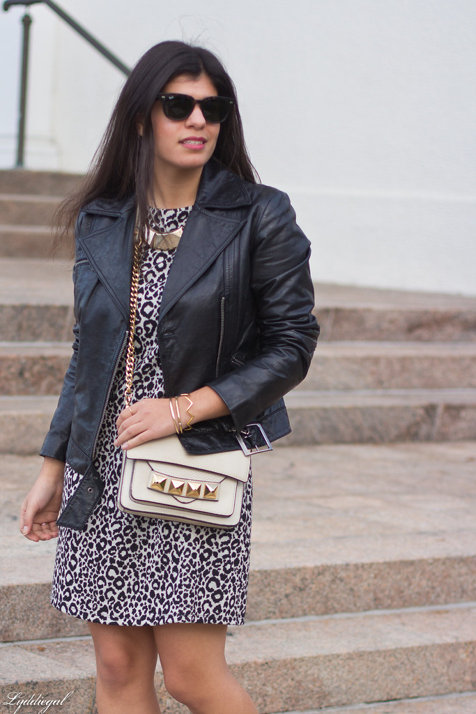 leopard dress, leather moto jacket, studded bag-3.jpg