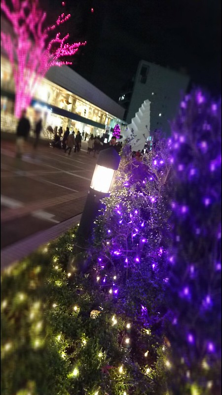 macaron tree Shinjuku Southern Terrace 05