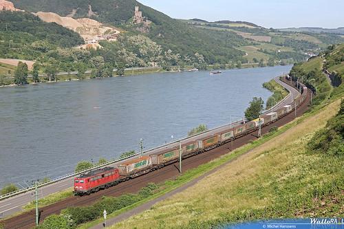Lorch (Rhein). 09.06.06.