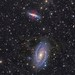 M81 and M82 by Paddy Gilliland @ Image The Universe