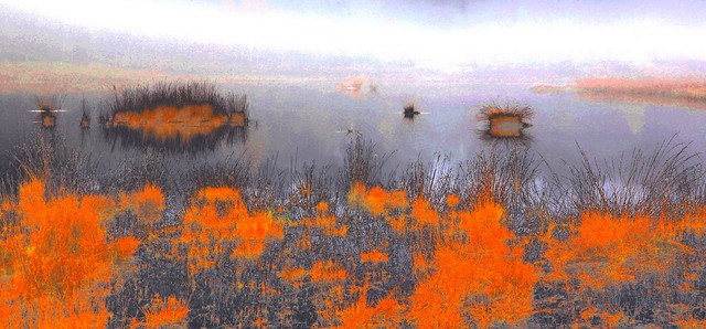 impressionism and the foggy fen