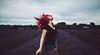 Lavender fields forever by Savannah Daras