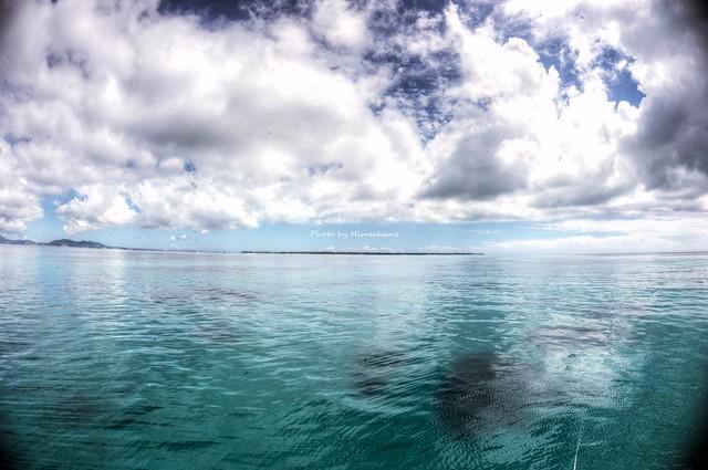 浜島東エリアはニゴニゴだったけど静か♪ でもこのあと爆弾低気圧によるうねりが。。