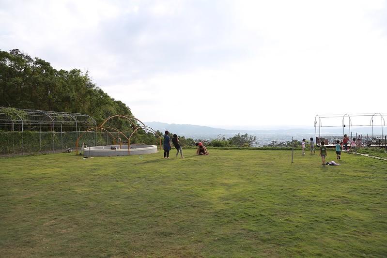 大草皮與景觀