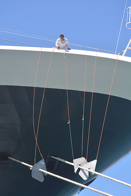 Noordam adjusting rat guards