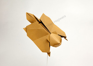 Flying Squirrel By Gen Hagiwara ORIGAMI SHOP Sur Flickr