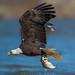 Fly fishin by Khurram Khan...