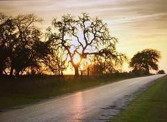 Fredericksburg Tx Sunset