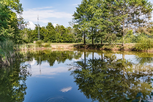 11-Troisième étang  45°04'53.9