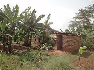 Kituka, Uganda