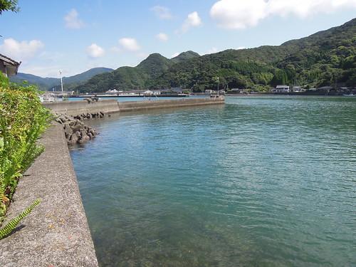 崎津の漁港