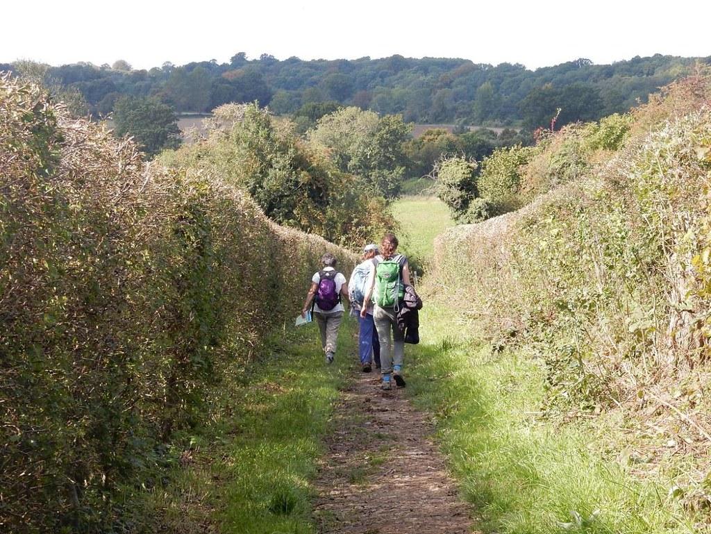 Headin' for Ightham Borough Green to Sevenoaks