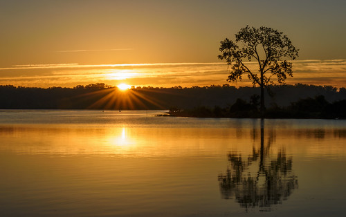 October Sunrise - One Tree Edition by Geoff Livingston