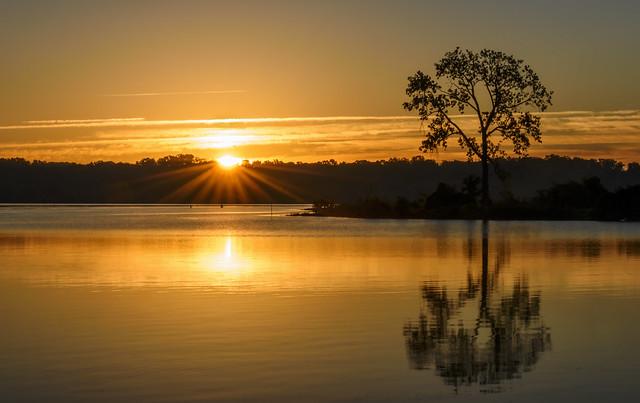 October Sunrise - One Tree Edition