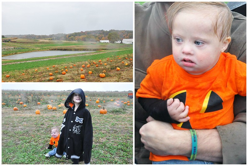 Rainy Day at the Pumpkin Patch