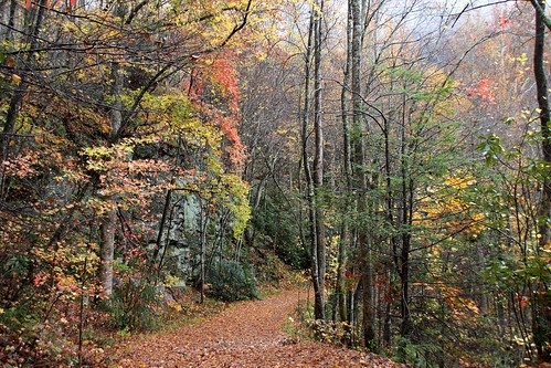 IMG_6591_Middle_Prong_Trail