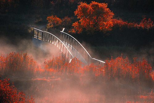 morning bridge autumn sunlight mist canada nature fog landscape photography nikon saskatchewan ianmcgregor wascanavalley ianmcgregorphotographycom