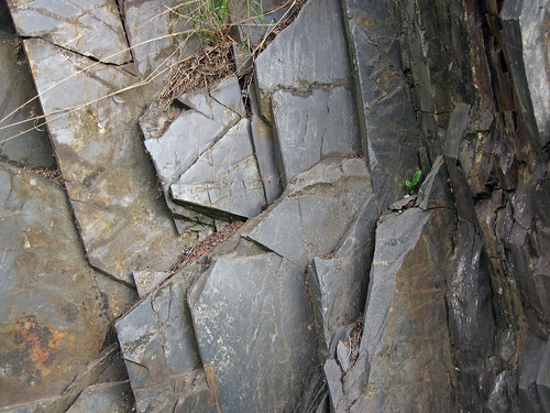 Slate (Knife Lake Formation, metamorphism at 2.7 Ga, Neoarchean; Rt. 135 roadcut, Gilbert, Minnesota, USA) 7