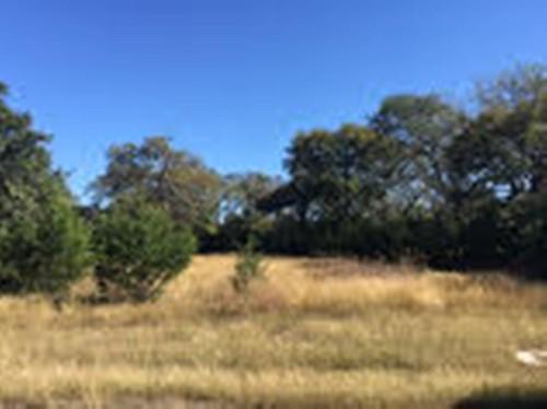 Lantana Valley 1