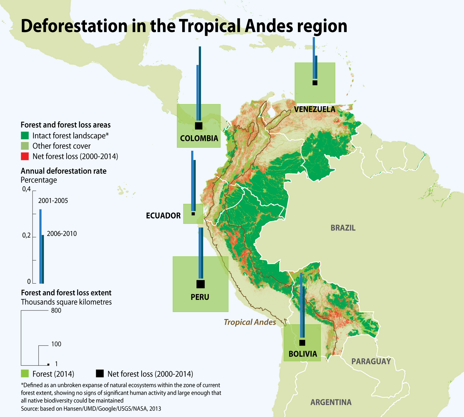Deforestation In The Tropical Andes Region