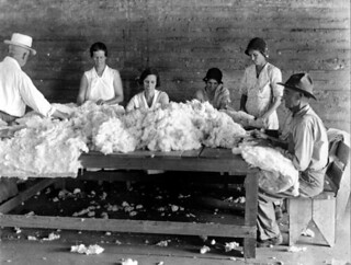 FERA workers at mattress factory - Gainesville
