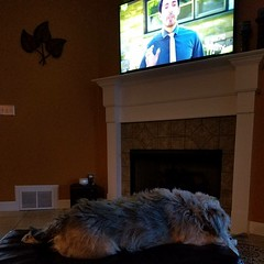 Sacked out to property brothers on HGTV. #naptime #dayoff #hgtv #propertybrothers
