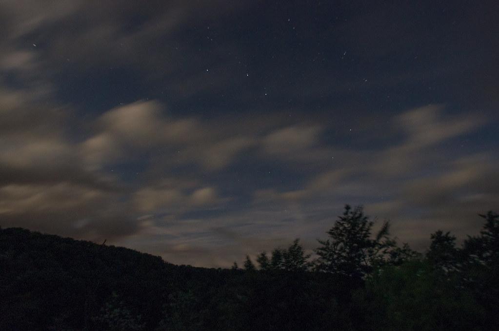 Observer les animaux - Forêt d'Auberive - Le ballet des nuages