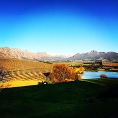 #gimmeatasteofyourfinefinewine #SA #southafrica #winebeats #fortheloveofwine