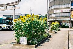 201508 trip by Kintetsu Nagoya line