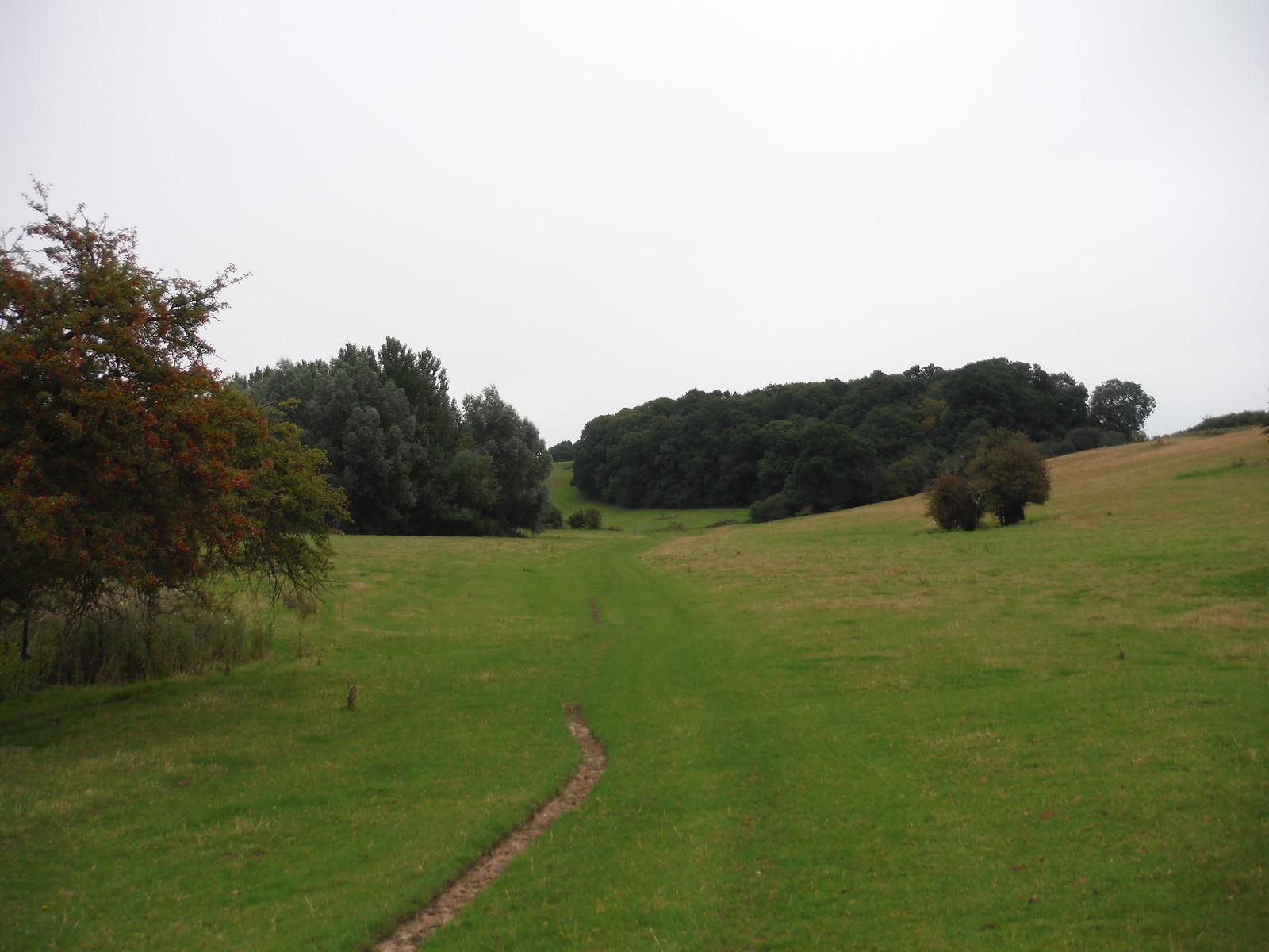 Ash Valley SWC Walk 164 Roydon to Sawbridgeworth via Henry Moore Foundation