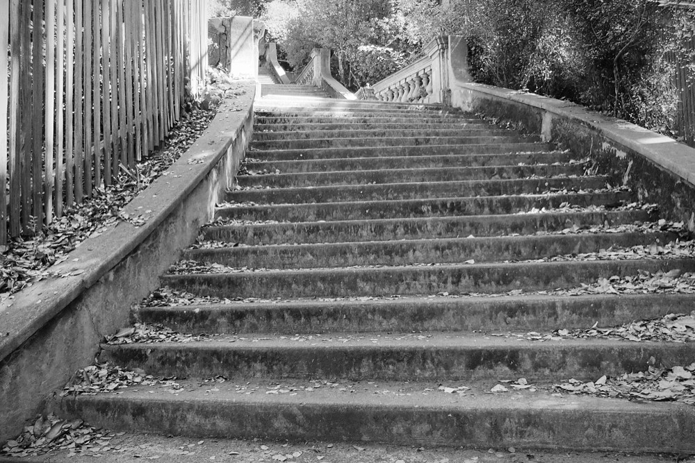 Berkeley Steps