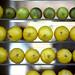Lemons and limes by Flyingindigo
