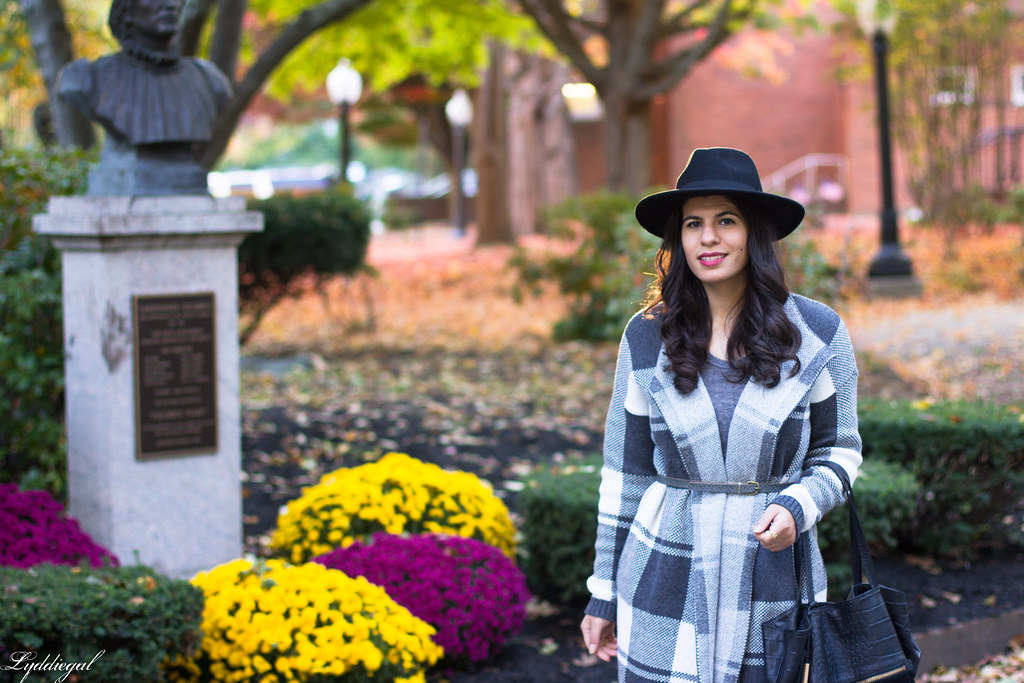 grey plaid coatagain, black pants, wool hat-2.jpg