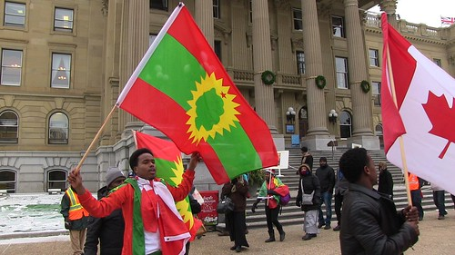 Stop Violence Against The Oromo