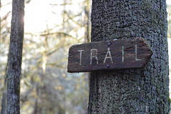 trail - on the way to Rainy Day Lake