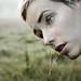 breathing dew by laura zalenga