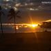 Hawaii-2098