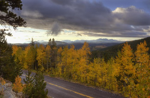 road autumn mountains fall leaves yellow rock clouds colorado view hills foliage vista aspens rockymountains frontrange aspentree usforestservice aspenleaves bouldercounty federalland brainardlakerecreationarea
