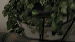 https://farm1.staticflickr.com/769/20970837731_b8d4716e64_b.jpg