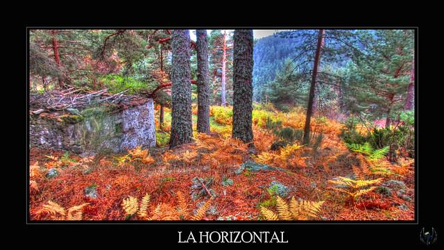 2015_10_04_La Horizontal-047