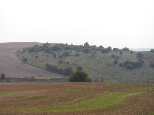 View back to Warden Hill, from Galley Hill (II)