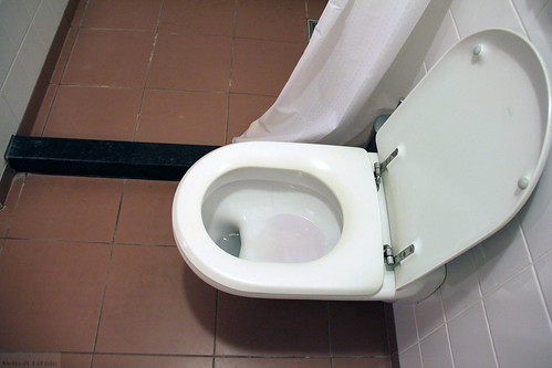 Why the two-tier toilet bowl?