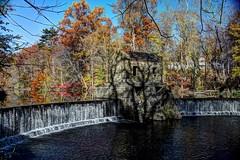 Speedwell Lake - Whippany River, Morristown NJ