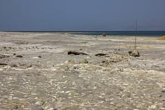 Dead Sea & Jordan Rift Valley 029